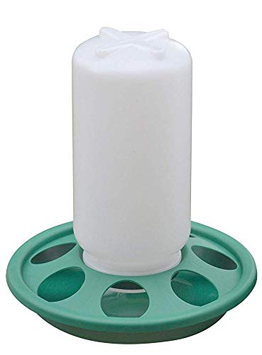 RentACoop 1 Liter Capacity Chick Feeder
