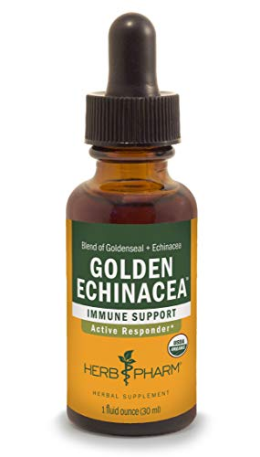 Herb Pharm Certified Organic Golden Echinacea Liquid Extract for Immune System Support, Organic Cane Alcohol, 1 Ounce (DGOLDEN01)