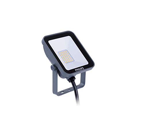 Philips Ledinaire LED Negro - Proyectores (LED, 1 bombilla(s), Negro, LED, I, IP65)