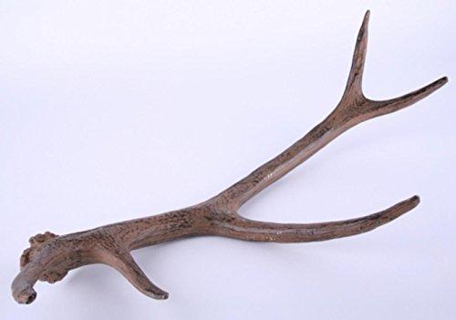 Zwei Deko Geweihe / Geweihstangen. Länge 52cm. Lieferung: 2 Stück