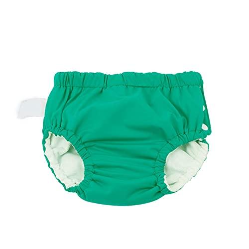 2-pack mode baby zwemluier, waterdichte badmode, baby herbruikbare doek luier, baby zindelijkheidstraining broek