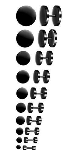 3-14mm Boucles d'oreilles Set 10 PAIRES en Acier Inoxydable Studs Boucle d'Oreille Faux Plug Fakeplugs Haltère Barbell pour Hommes Femmes, Argent/Noir/Or/Or Rose/Bleu