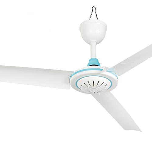 TEQIN Ventilador de techo eléctrico de bajo voltaje CC 12 V, para el hogar, color blanco y azul