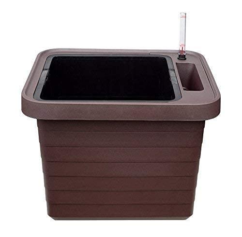 Pflanztrog Blumenkasten Bewässerungskasten Berberis mit Rollen u. Bewässerungssystem (Weiß-Berberis UNO, 45cm)