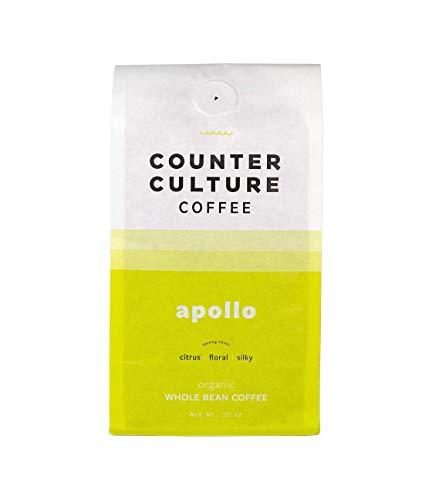 Counter Culture Coffee | Apollo | 12 oz | Whole Bean