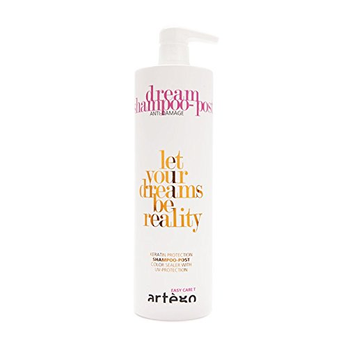 Artègo Dream Shampoo Post - Easy Care T Dream - 1 Liter