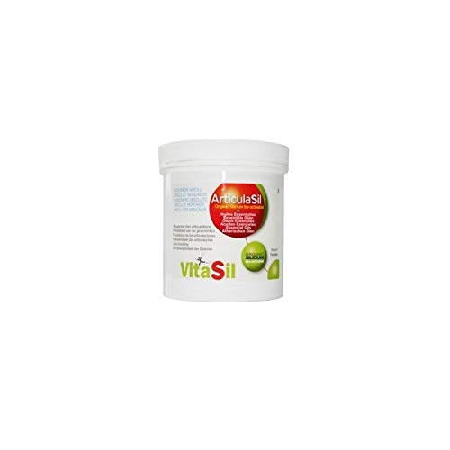Vitasil 7920008686 Articulasi Silicium Organique Gel Articulations + MSM Glucosamine Chondroïtine