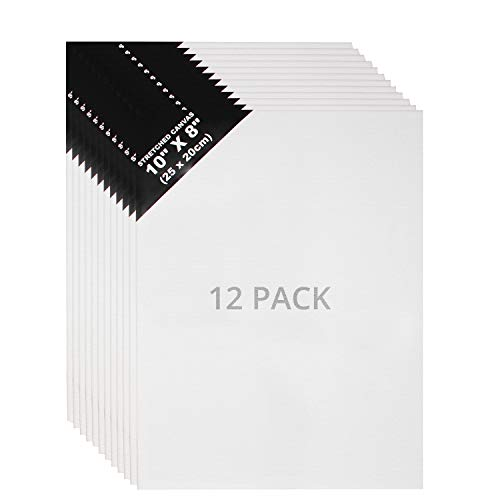 Lienzos (12 Piezas) - L25 x W20cm Set Lienzos para Arte - 3mm de Espesor Panel de Lienzo para Pintar - Lienzo en Blanco para Obras de Arte - Lienzos para Oleo, Pintura Acrílica