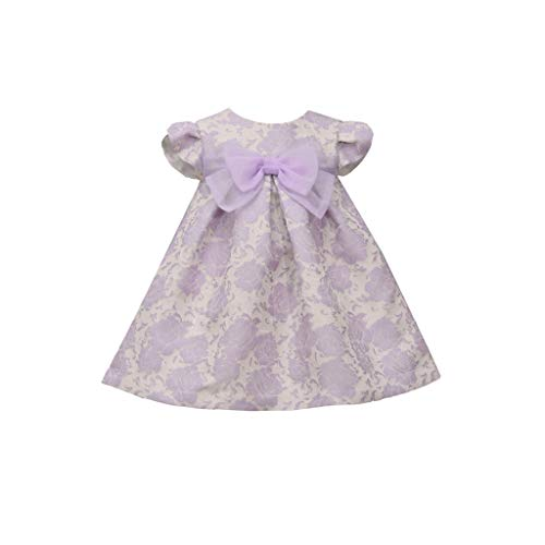 Bonnie Jean Baby Girl's Purple Special Occasion Dress - for Baby and Toddler Girls, Purple, 24 Months