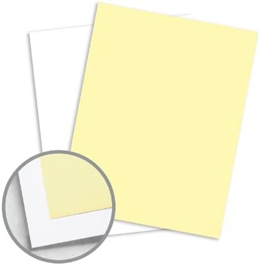 NCR Paper Brand Financial sales sale Superior Our shop OFFers the best service Multi-Colored 8 Carbonless 1 2 -