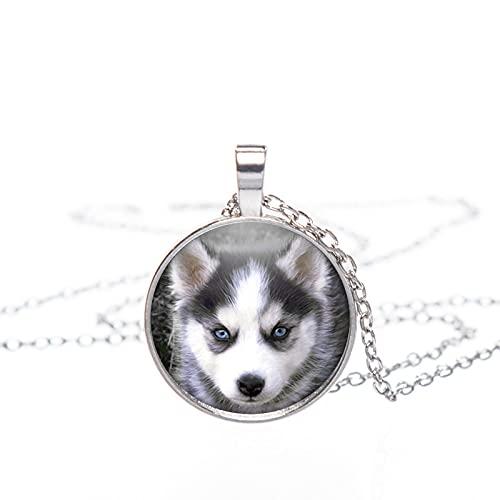 ZYLL Collar de Perro Cachorro Colgante de Husky Siberiano Joyas de Husky...
