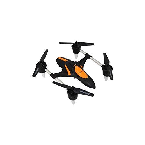 Qimmiq Drone Hornet