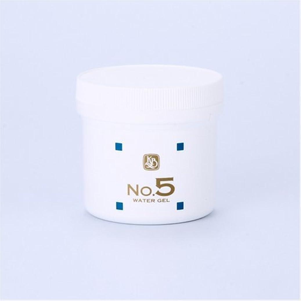 洞察力争う製品顔を洗う水シリーズ ウォーターゲルNo5(鎮静パック) 250g