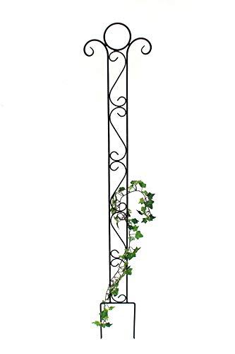 DanDiBo Rankhilfe Metall Classic Rankgitter 135 cm Kletterhilfe Bodenstecker Stecker Gartenstecker Eisengitter Rankgerüst