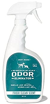 Best Enzyme Cleaner For Cat And Dog Urine Reviews 2019