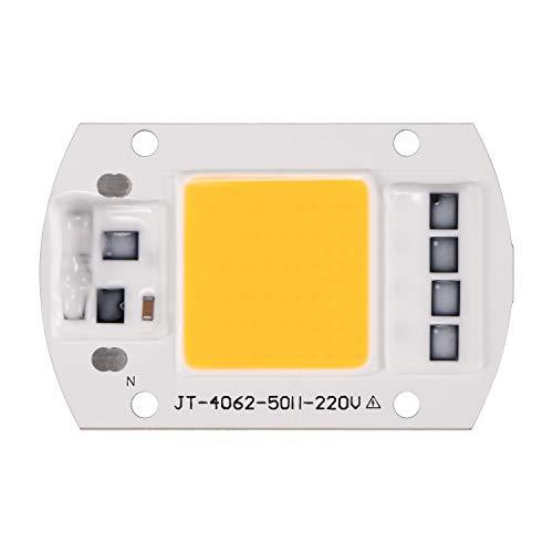 OurLeeme 100W 220V LED Pilote pour Puce Intelligente COB pour Projecteur Projecteur (Blanc Chaud)