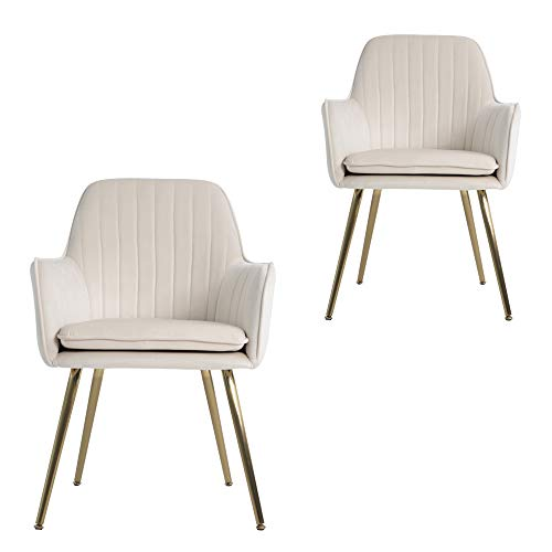 Lansen Furniture Modern Living Dining Room Accent Arm Chairs Club Guest with Gold Metal Legs (2, Cream)