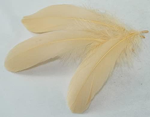 AILIFE 13-20cm pluma de ganso 5-8 pulgadas 50pcs/Bag Multicolor DIY Material