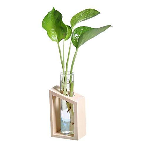 Chytaii - Jarrón de cristal hidropónico con soporte de madera, tubo de...