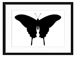 "beautiful swallowtail is in a 20"" x 14"" wooden frame on amazon"