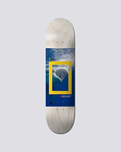 Element Skateboard Deck Nat Geo Greyson Shrk 8.5 Skateboard Deck