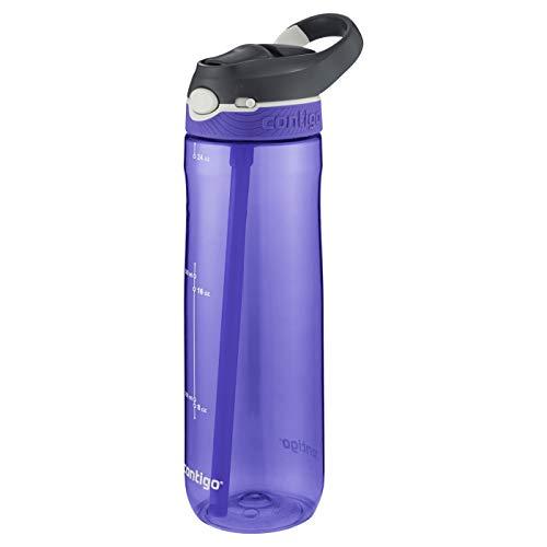 Contigo 24oz Autospout Straw Ashland Hydration Bottle Grapevine