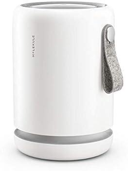 Molekule Air Mini Small Room Air Purifier