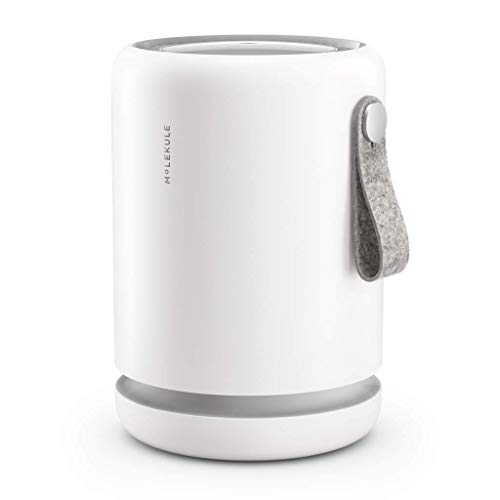 Molekule Air Mini Small Room Air Purifier with PECO Technology for Smoke, Allergens, Pollutants, Viruses, Bacteria, and Mold, White