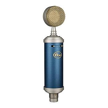 Best bluebird mic Reviews