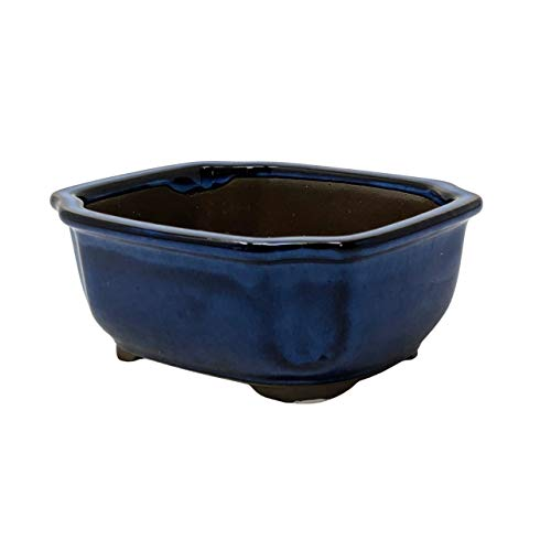 5' Bonsai Pot Namako Glaze - Blue Ceramic Pot with Drainage Mesh Screens Included, Used as Starter Pots for Planting Bonsai, Succulents or a Wide Variety of Houseplants