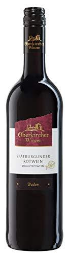 Oberkircher Winzer Spätburgunder Rotwein Qualitätswein Halbtrocken (1 x 0.75l)