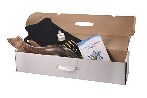 SHOFAR Set FULL Natural 26'-28' Kudu Horn Yemenite + Bag + odor gone + Guide + Carrying Box Case