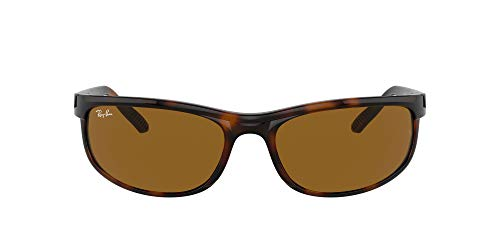 Ray-Ban 0RB2027 Gafas, DARK HAVANA, 62 Unisex