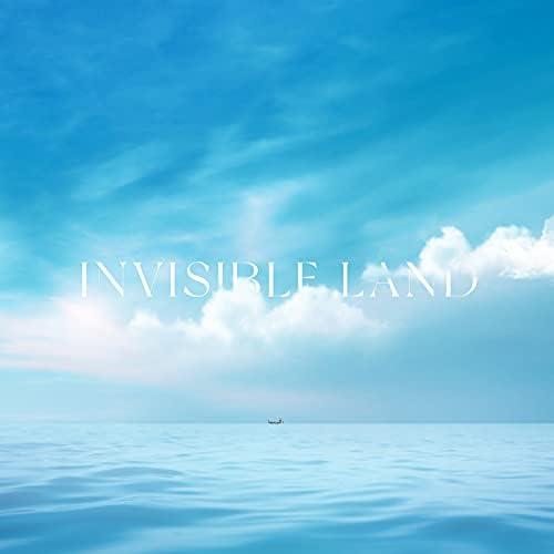 Claus Waidtløw, Nikolaj Hess & Invisible Land