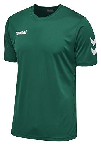 Hummel Herren Core Polyester Tee T shirt, Evergreen, L EU