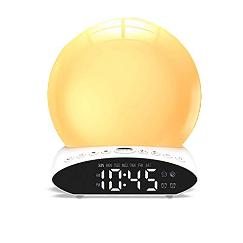 ZHIHQ Wake Up Light Alarm Clock Sunrise/Sunset Simulation with Dual Alarms Snooze Function 7 Colors Atmosphere Lamp, FM Radio & 7 Natural Sound for Kids, Adults, Home, Office
