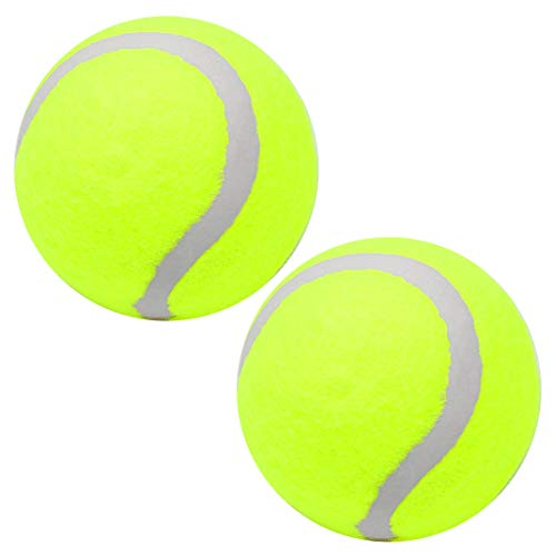 nuoshen 2 Pcs Tennis Balls, High Bounce Toy Ball Squeaky Tennis Balls Toy Ball for Daily Training Playing