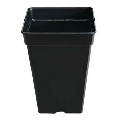 Confezione da 10 vasi quadrati di plastica nera 7 litri -20 x 25,5 cm