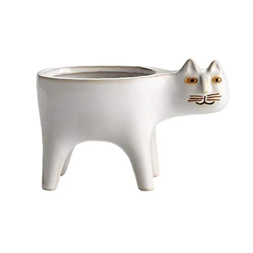 Nicedier Forma de cerámica Planta suculenta Gato Pot Recipiente Maceta Blanca decoración del hogar Tiesto