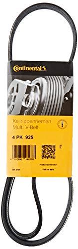 SKF VKMV 5PK1355 Cinghia di multi-V