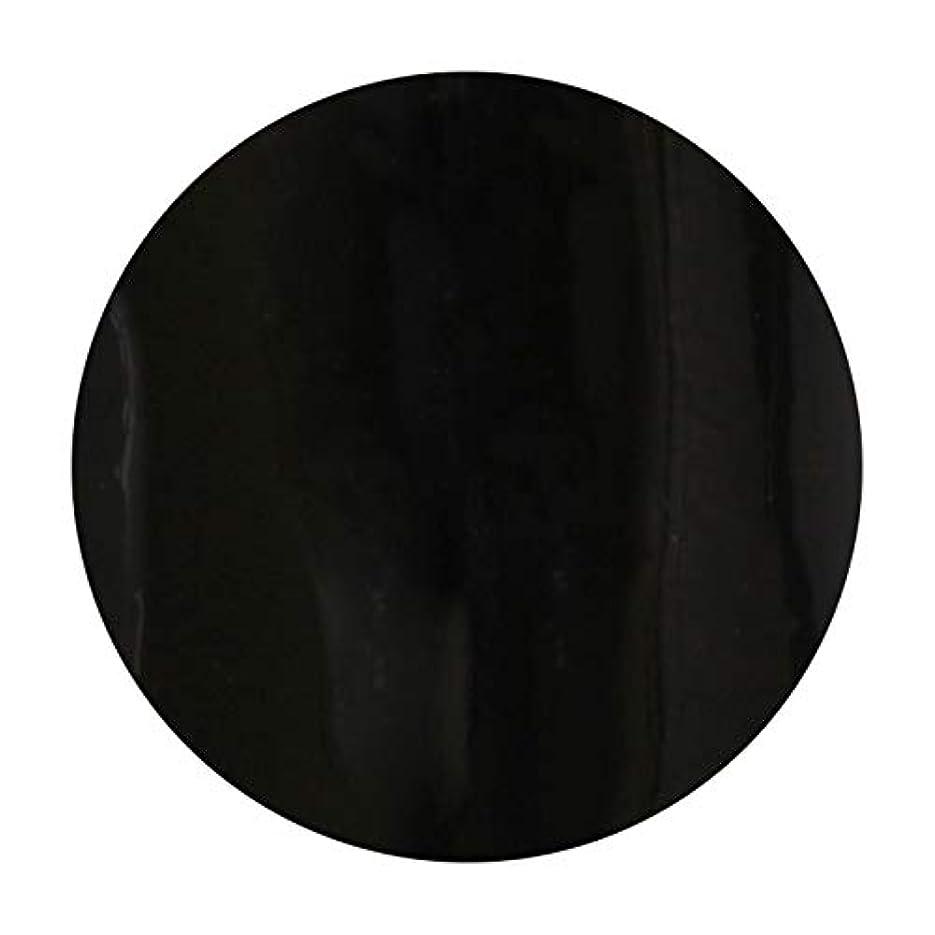 高いオートマトンキルトT-GEL COLLECTION ティージェル カラージェル D219 ブラックライナーEX 4ml