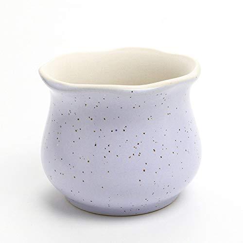 DIYOMR Speckle Pastel Ceramic Small Succulent Cactus Planter Pot Flower Pots Planters Containers, 3.5 x 3.5 x 3.0 inches Indoor Decorations Bonsai Pot (Purple)