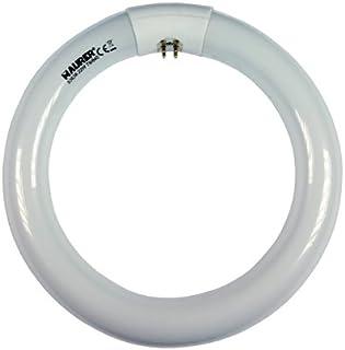 Maurer Tubo fluorescente circular E14, 36 W
