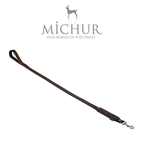 MICHUR Favre, leren hondenriem, leiband voor honden, leren band hond, band, bruin, bijpassende halsband Favre is apart verkrijgbaar