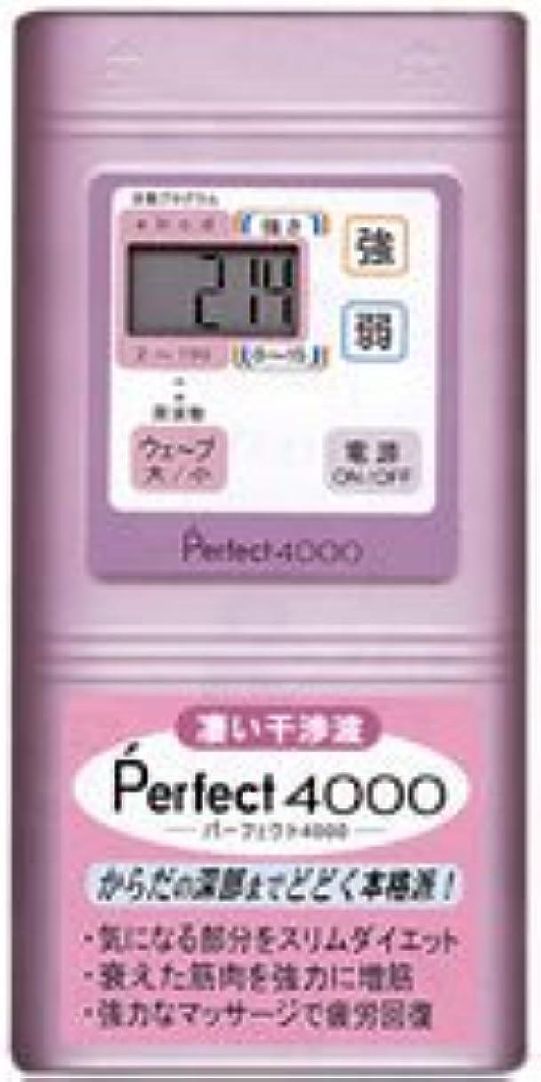 霧深い馬鹿攻撃的Perfect4000 干渉波EMS パーフェクト4000