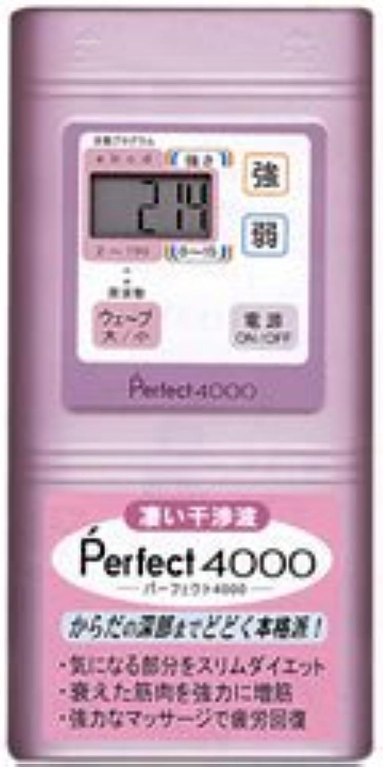 暖かさ除去ポイントPerfect4000 干渉波EMS パーフェクト4000