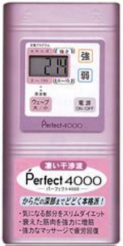 遊び場単に電子Perfect4000 干渉波EMS パーフェクト4000