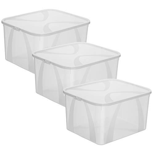 Rotho Arco 3er-Set Aufbewahrungsbox 25l mit Deckel, Kunststoff (PP) BPA-frei, transparent, 3x25l, (42 x 35,1 x 23 cm), 3