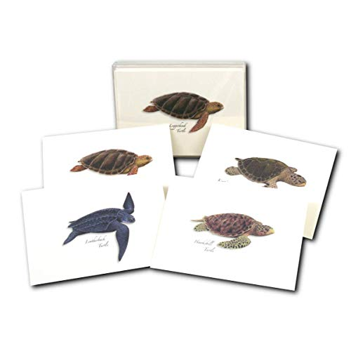 Earth Sky + Water - Sea Turtle Assortment Notecard Set - 8 Blank Cards with Envelopes (2 Each of 4 Styles)