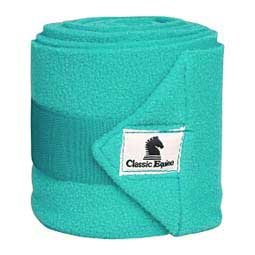 Classic Equine Polo Wraps Set of 4 Laundry Bag Prints All Styles (Teal)